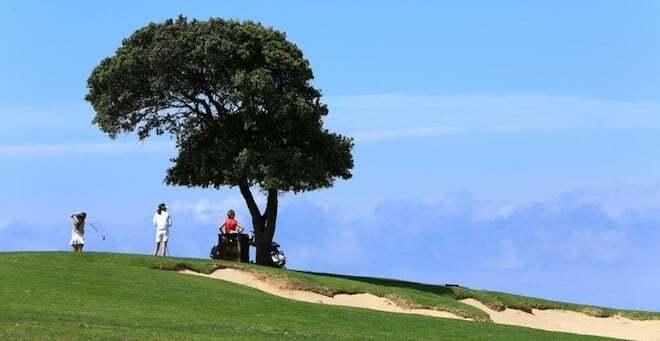 The Murtoli Golf Links - Fairway and tree