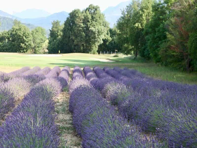 Digne les Bains Golf Course - 2021